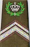 1978 Rangonderscheidingsteken Wmr I met Owi opleiding, geplaatst als Esk Owi maar nog niet bevorderbaar