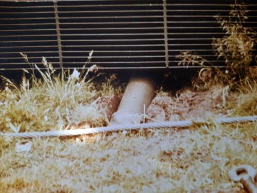 1986 SSV Esk 103 Verkbat Station Godenstedt BOG zet de Leop II B Esk weer recht. Inz. Peter van Wijk 2