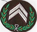 Rangonderscheidingsteken van een eskadronsopperwachtmeester